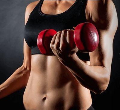 Hantlar för en vältränad kropp finns hos Sporttema.