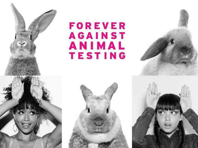 The Body Shop kämpar för djurs och människors rättigheter samt miljöfrågor.