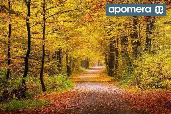 Förkyld? Apomera.se har något för varje årstids besvär.