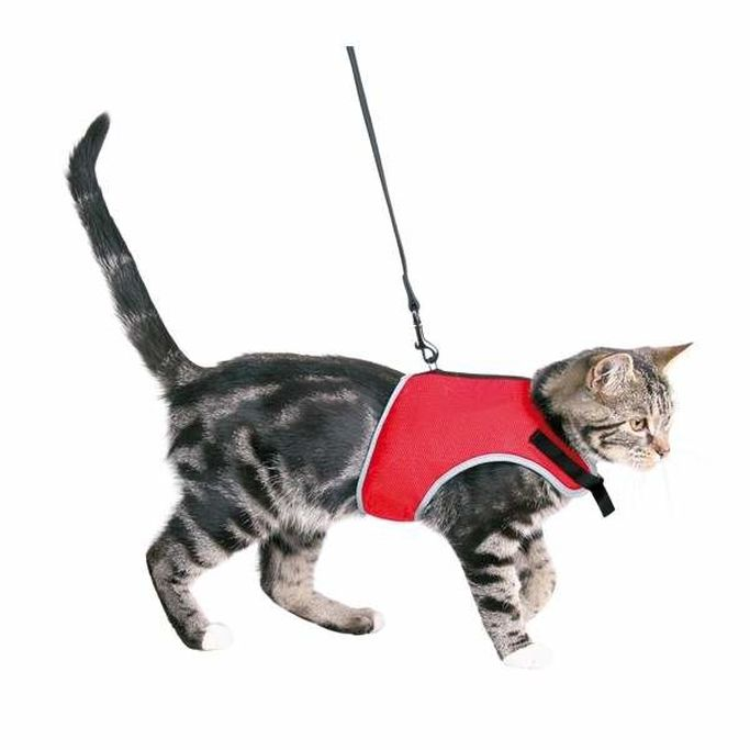 Produkter för katter, hundar, smådjur, gnagare och fåglar hos VetZoo.